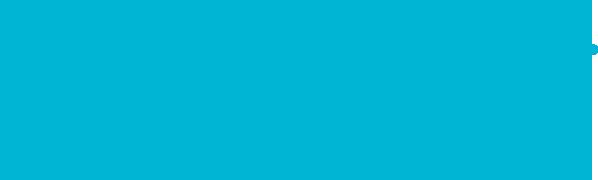 PitPoint Logo